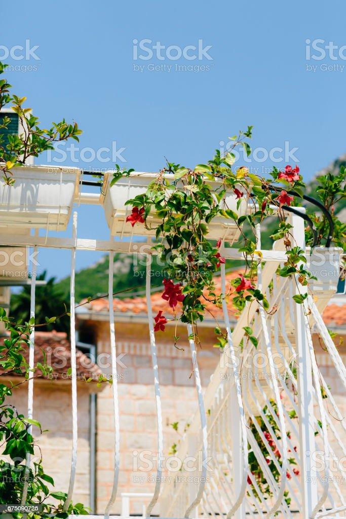 Balcón forjado en una vieja casa. Arquitectura de los Balcanes - foto de stock