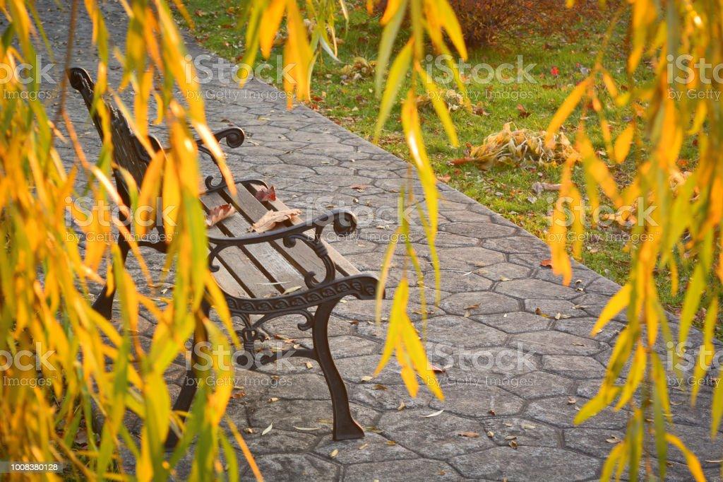 Banco forjado con hojas sobre un fondo de otoño - foto de stock
