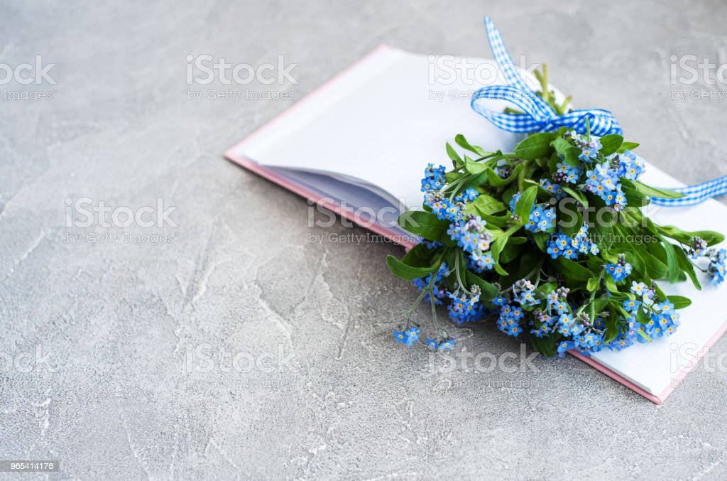 Forget me not flowers and notebook zbiór zdjęć royalty-free