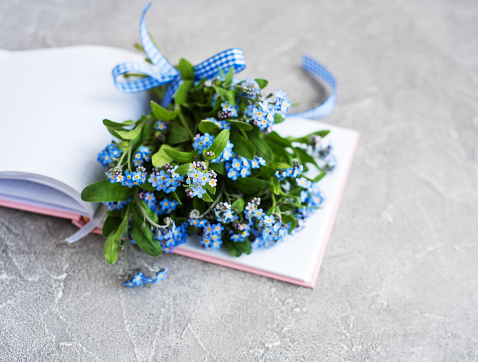 Glöm Mig Inte Blommor Och Bärbara-foton och fler bilder på Beskrivande färg