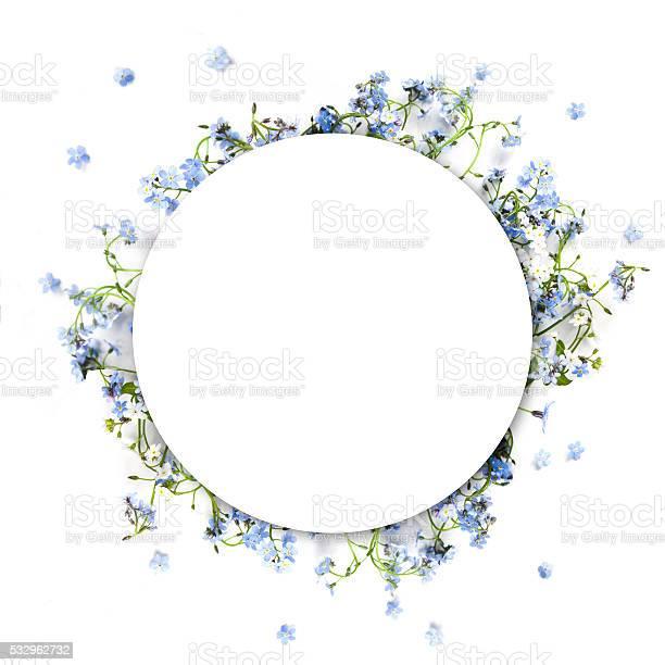 Forgetmenot blue forest flowers nature circle background picture id532962732?b=1&k=6&m=532962732&s=612x612&h=gjl9cjgkccwwblrkzhzdilh52lgwrwcvlq9a6fjxd4q=