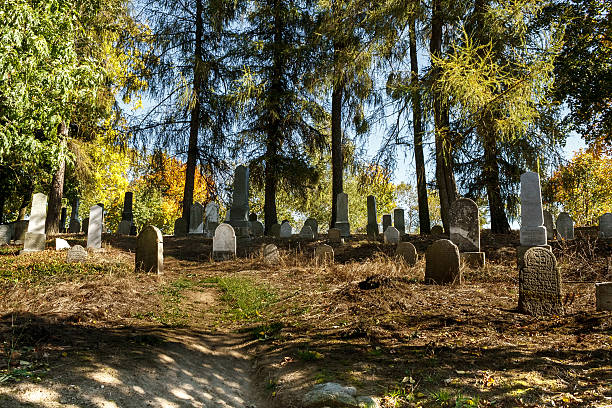 forgotten and unkempt Jewish cemetery with the strangers stock photo