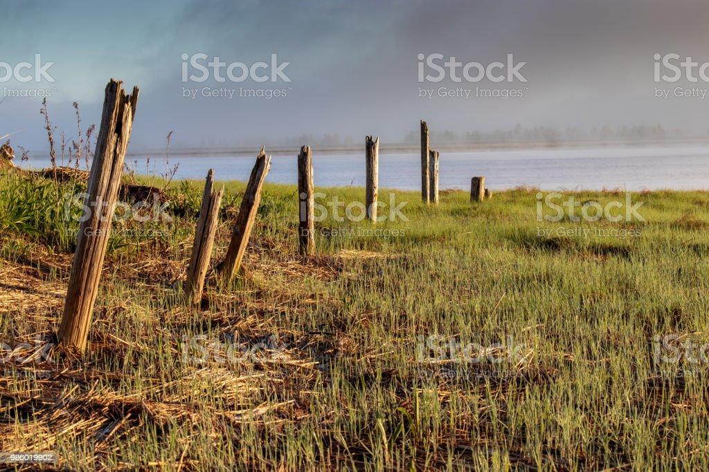 Forgotten Fence Line. stock photo