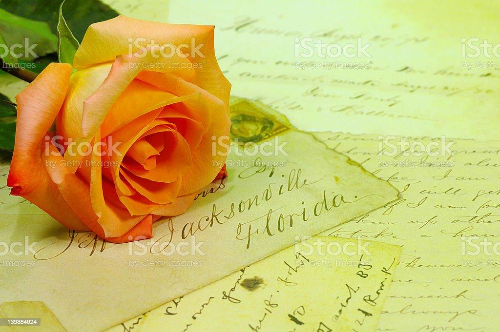 Forgotten Love royalty-free stock photo