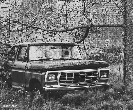 An abandoned pickup truck on a small farm.