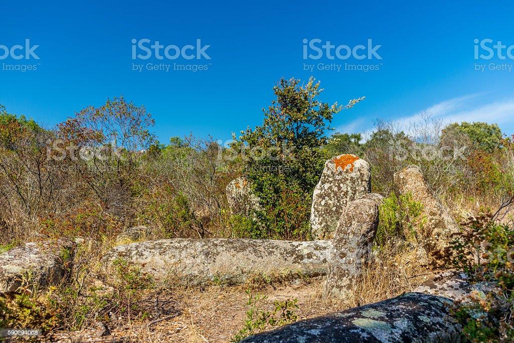 Forgotten prehistoric site in the Corsica hills - 3 royaltyfri bildbanksbilder