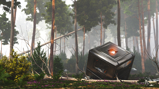 Mysterious black box in the forest