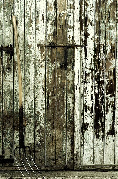 Fork 2 Fork tool in front of an older wooden door anachronistic stock pictures, royalty-free photos & images