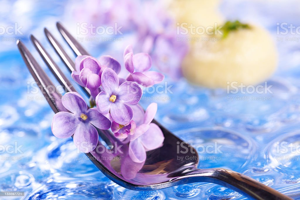 Fork and Lilac stock photo