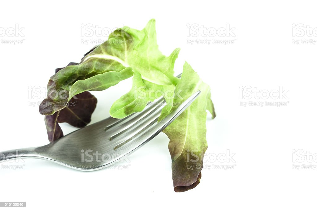 Fork with corn salad leaves  isolated on white background stock photo