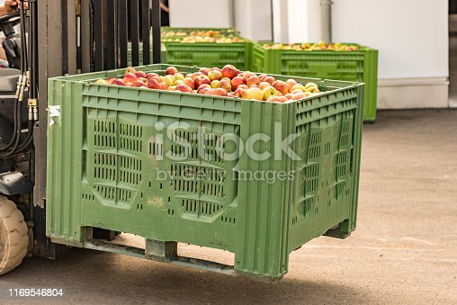 istock Forklift carries crates of fruit. Many apples in container 1169546804