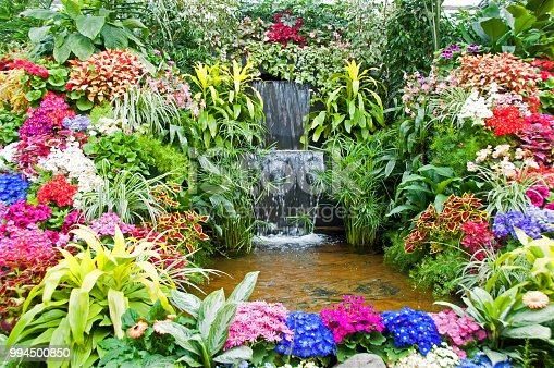 Formal flower garden water feature with pond