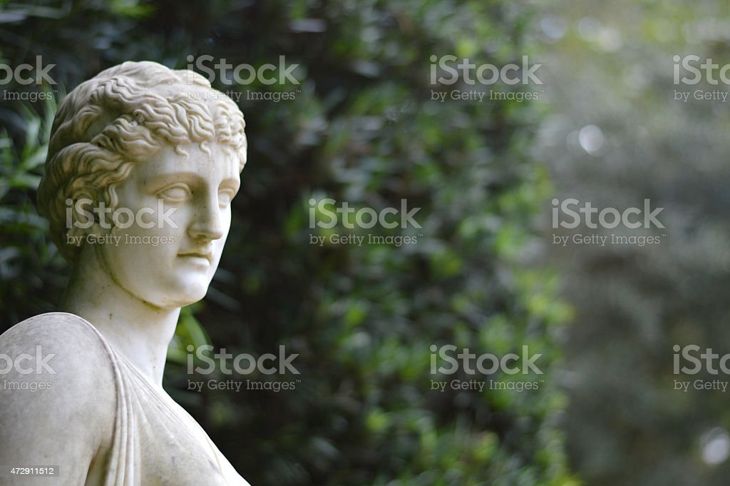 Formal Garden Background stock photo