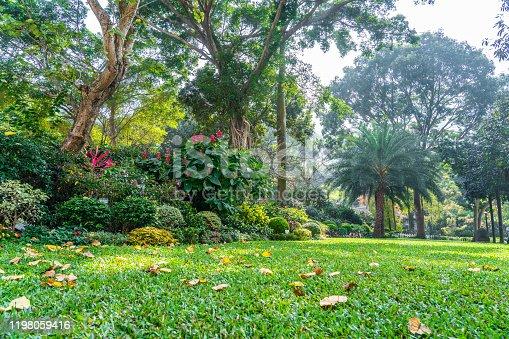 601026242 istock photo Formal Garden in Hong Kong park 1198059416