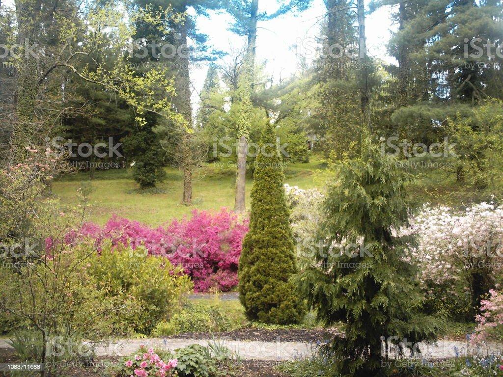 Formal Garden in Summer stock photo