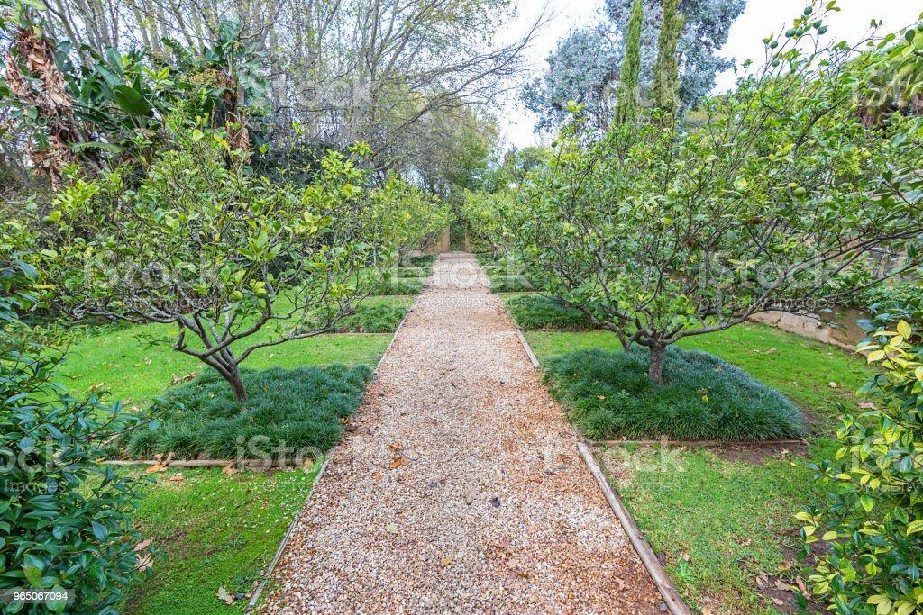 formal garden orchard zbiór zdjęć royalty-free