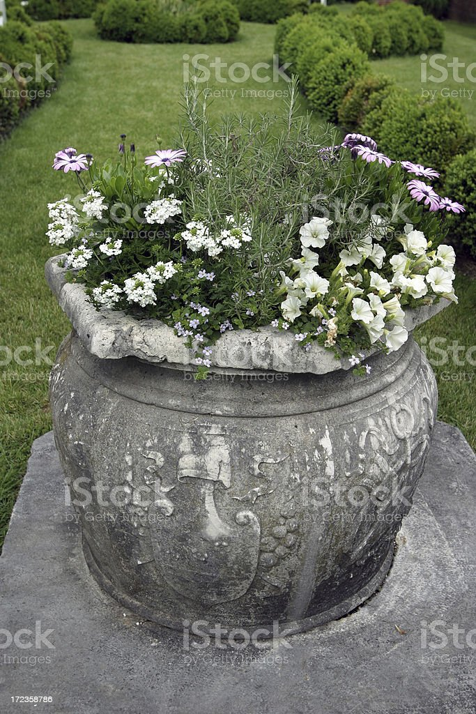 Formal Garden Stone Flower Pot in Spring royalty-free stock photo