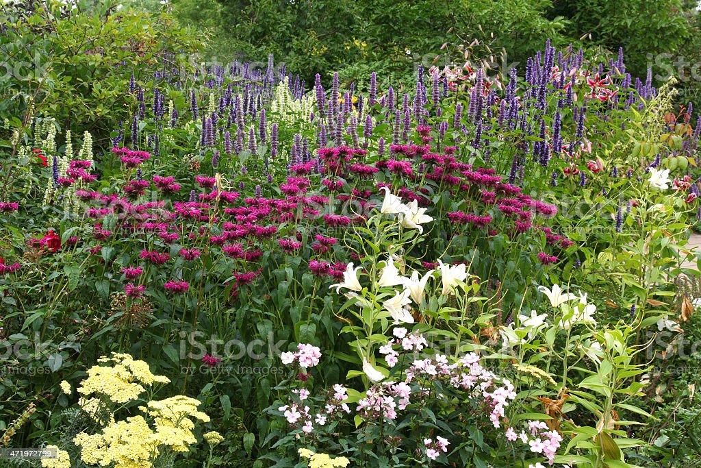 Formal Garden with colourful Border. stock photo