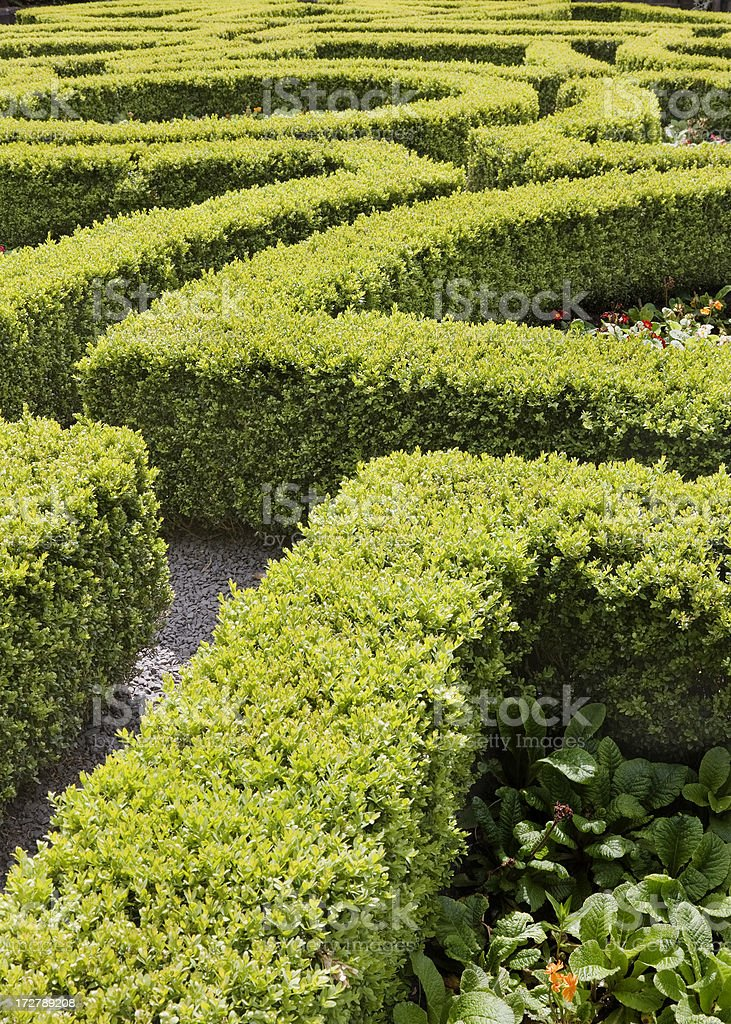 Abstract view of a formal garden.More mazes: