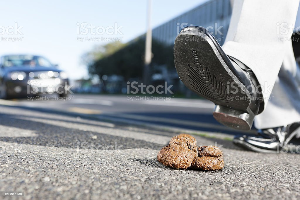 Formally dressed man's foot heads for pile of doggy-do stock photo