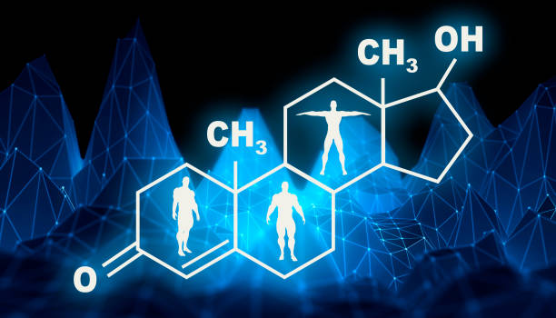formula hormone testosterone. - testosterone stock pictures, royalty-free photos & images