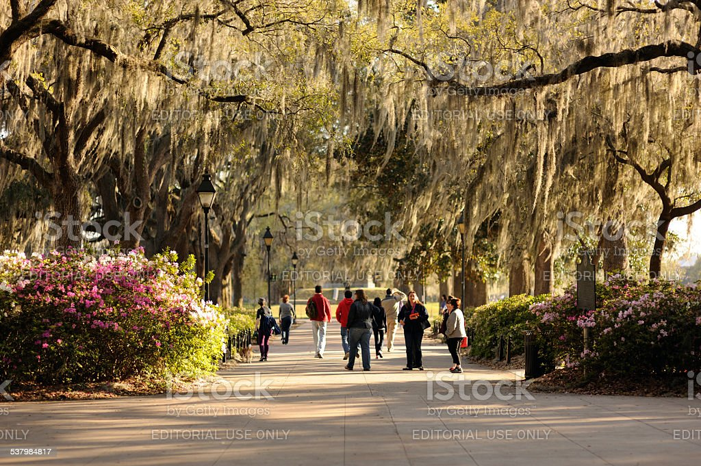 Forsyth Park in Savannah stock photo