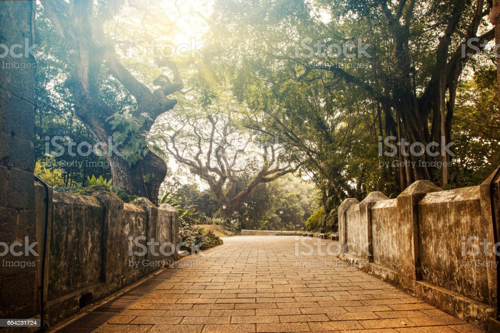 Fort Canning Park in Singapore stock photo