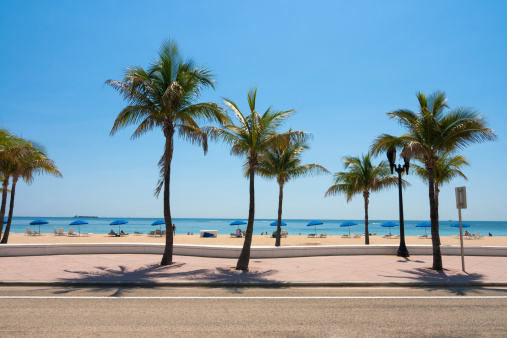 Fort Lauderdale beach and palm trees