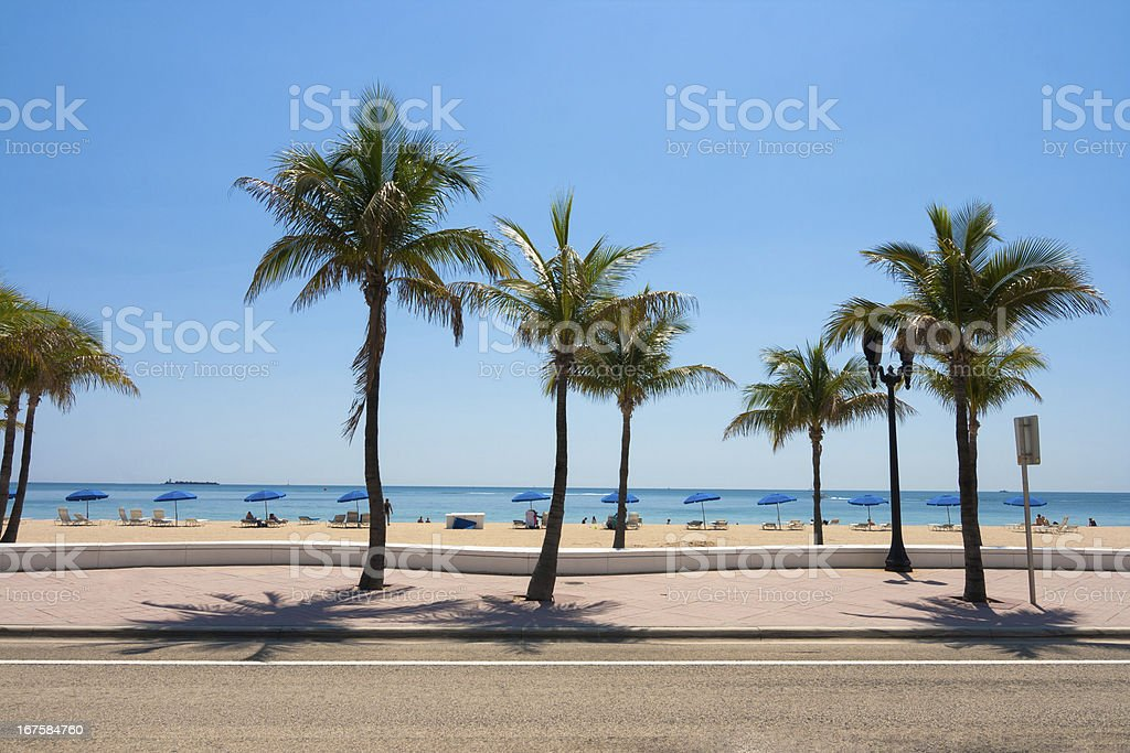 Fort Lauderdale beach and palm trees stock photo