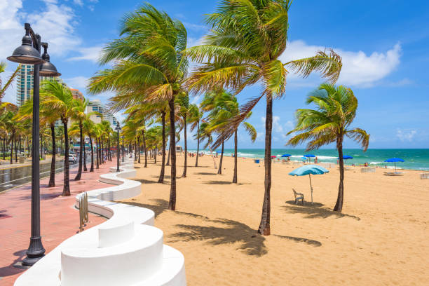 fort lauderdale beach - south stock photos and pictures
