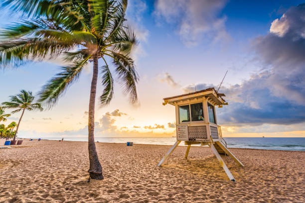 Fort Lauderdale Beach Fort Lauderdale Beach, Florida, USA. beach hut stock pictures, royalty-free photos & images