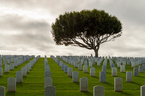 Fort Rosecrans National Cemetery at Point Loma, San Diego