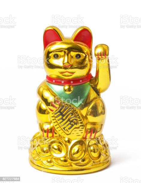 Fortune chinese cat picture id827227684?b=1&k=6&m=827227684&s=612x612&h=dphwsknsrv3c69ozlq1tqmlaiqjlzj1d0ehlgagtvzm=