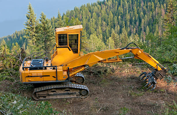 forwarder on logging road near nelson, bc, canada - logging equipment stock photos and pictures