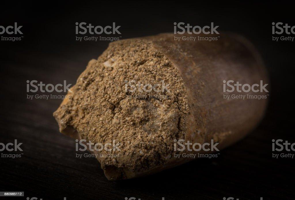 Fossil Plesiosaurus Tooth on wood background stock photo