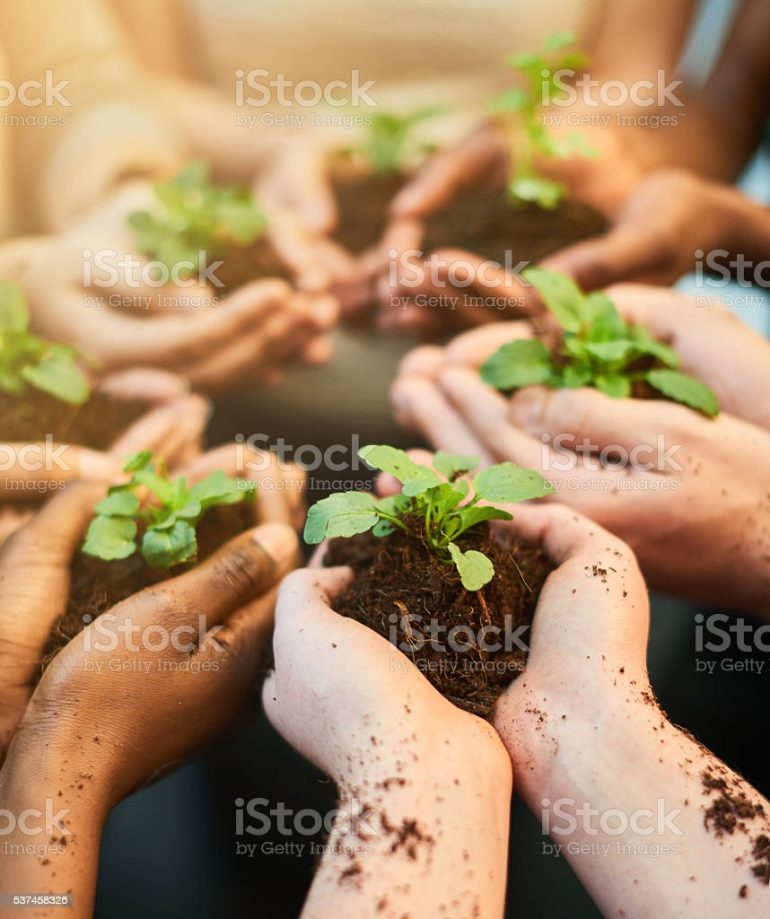 Fostering the future together stock photo