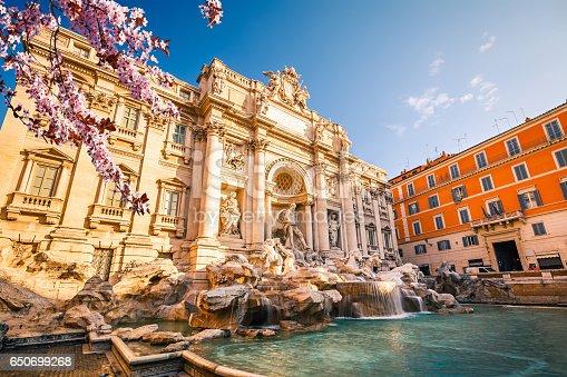 istock Fountain di Trevi at spring 650699268