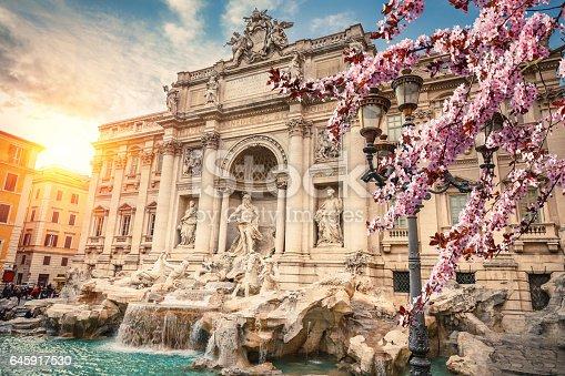 istock Fountain di Trevi 645917530