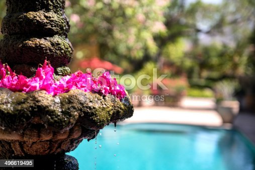 Old fountain with swimming pool in background and flower pedals