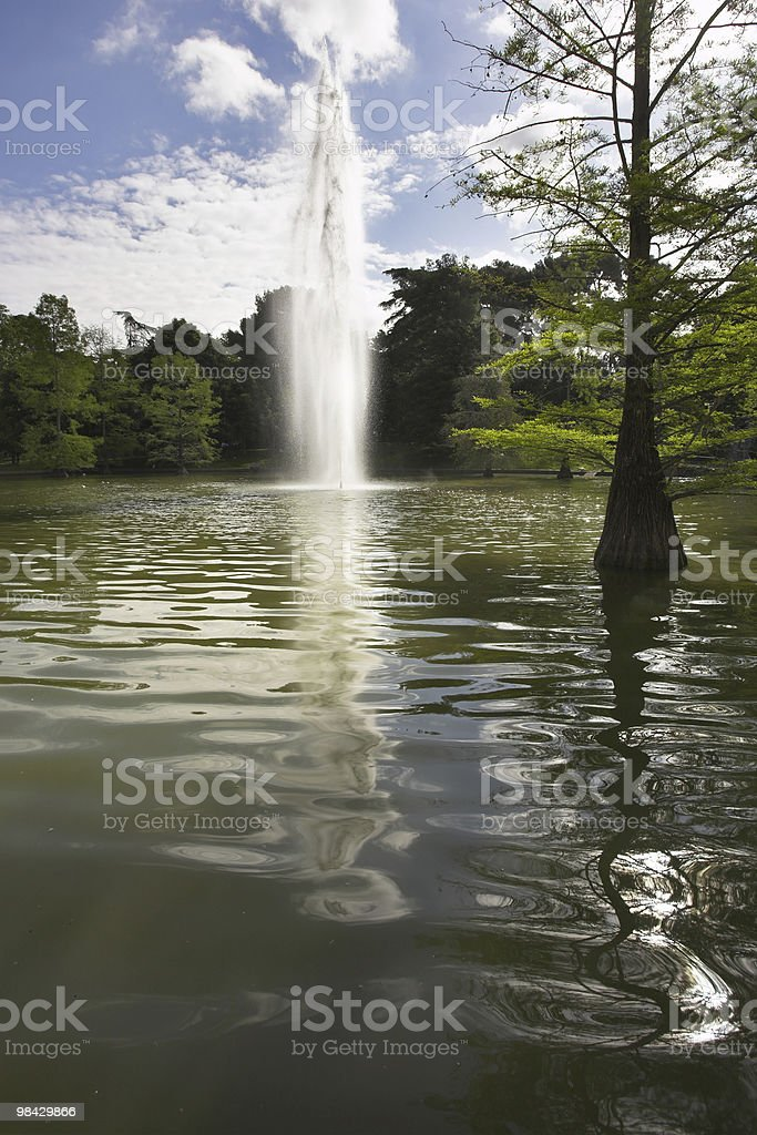 Fountain in city park royalty-free stock photo