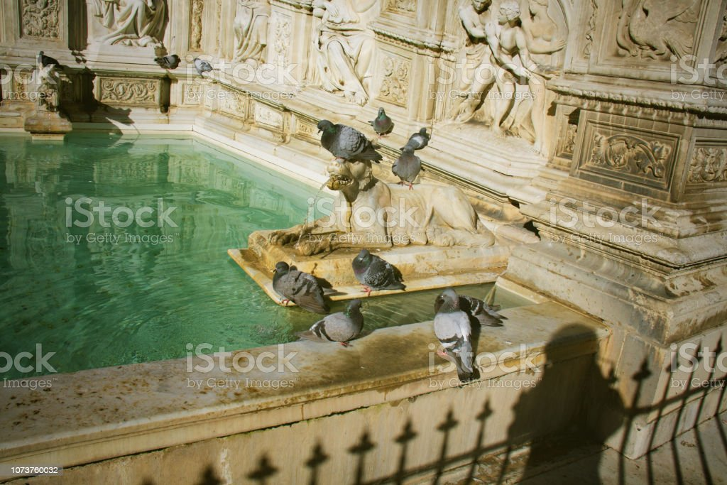 Fountain in Siena on Piazza del Campo стоковое фото