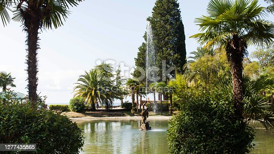 Fountain in the garden of Gagra Abkhazia surrounded by green palms and trees. The concept of travel. High quality photo
