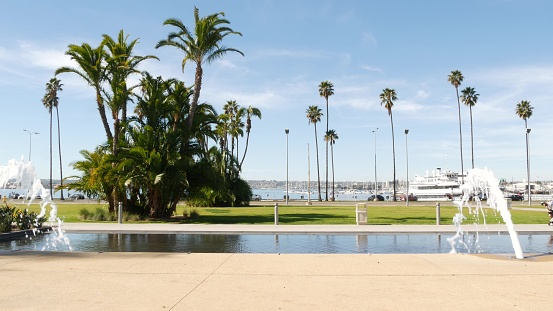 Fountain in waterfront city park near San Diego county civic center in downtown, California government authority, USA. Pacific ocean harbour, embarcadero in Gaslamp Quarter. Palms and grass near pier.