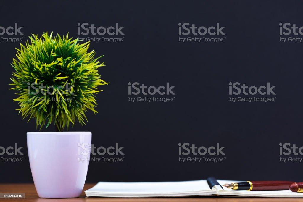 Vulpen of inkt pen met notebookpapier en kleine decoratie boom in witte vaas op houten werktafel met kopie ruimte, kantoor bureau concept. - Royalty-free Accountancy Stockfoto