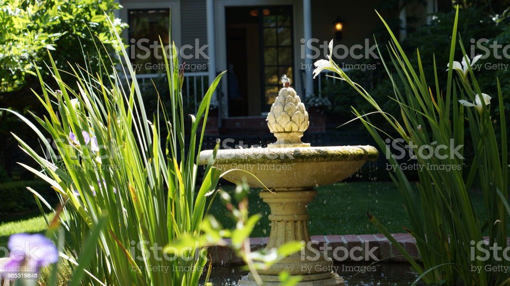 Fountain  – Foto