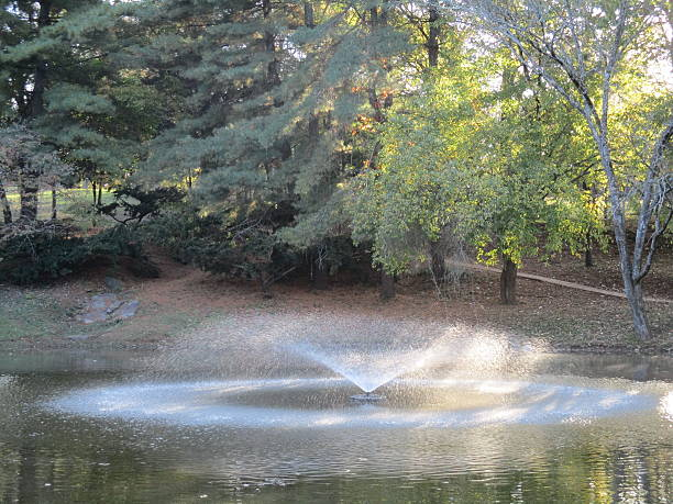 Fountain Spraying Water in a Pond in a Park stock photo