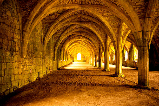 fountains abbey cellarium - crypt stock pictures, royalty-free photos & images