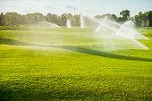 fountains watered golf course with green grass