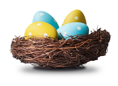 Brightly painted easter eggs in a rustic birds nest made from twigs with clipping path