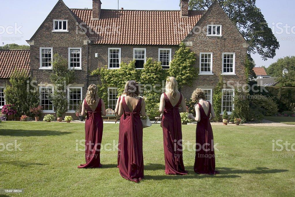 Four bridesmaids stock photo